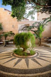 Ogród w obiekcie Casa Delfino Hotel & Spa