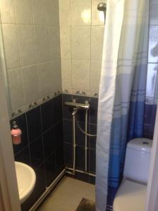 A bathroom at Ämmän Hotelli