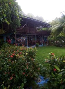Jardín al aire libre en Luminosa Montezuma Hostel