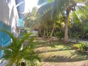 Um jardim em LES COCOTIERS Moorea 2