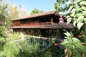 Kebun di luar Hotel Pondok Sari Beach & SPA Resort