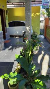 A patio or other outdoor area at Lusi Homestay
