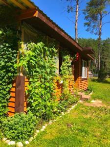 Сад в Дом с баней на берегу озера Волго