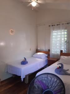 A room at The Funky Dodo Backpackers Hostel