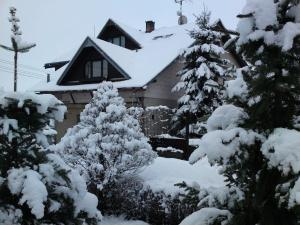 Privat Apartma Ulrych v zimě
