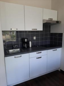 A kitchen or kitchenette at De Lente van Drenthe