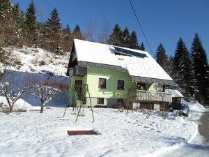 Apartment Žvan v zime