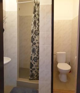 Koupelna v ubytování Penzion Stavař