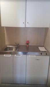Η κουζίνα ή μικρή κουζίνα στο Poseidon Apartments