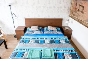 Postel nebo postele na pokoji v ubytování Vila Alice