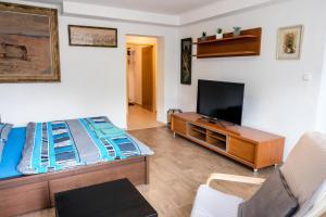 TV a/nebo společenská místnost v ubytování Vila Alice