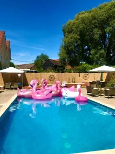 The swimming pool at or near The Farm Stay