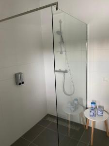 A bathroom at Gouda's Herenhuys