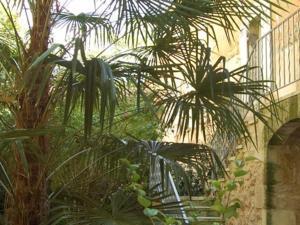 Jardin de l'établissement La Villa Premayac