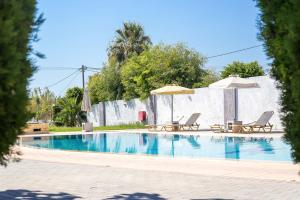 The swimming pool at or near Maroula Studios
