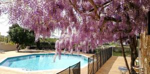 Piscine de l'établissement Château MontPlaisir charming b&b in Provence ou située à proximité