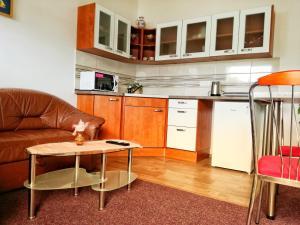 Кухня или мини-кухня в Dj-penzion