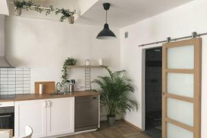 A kitchen or kitchenette at Joli Loft VIEUX PORT saint victor