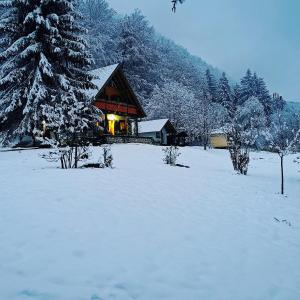 Pensiunea Ioana during the winter