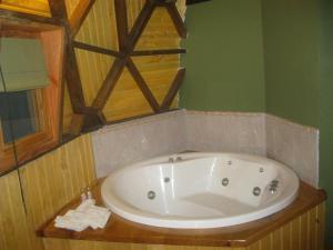 Un baño de Domos Puelo