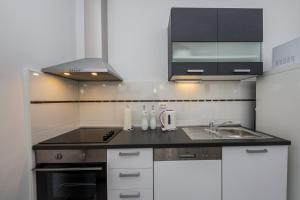 Kuchyň nebo kuchyňský kout v ubytování Apartment Ivana