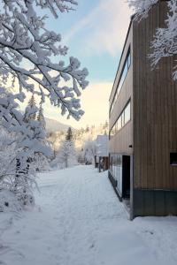 Chata Zázvor v zime