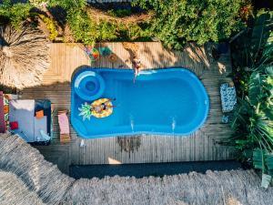 The swimming pool at or near El Zoo Hostel, Bar & Pool