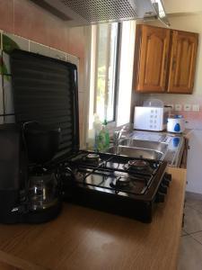 Cuisine ou kitchenette dans l'établissement villa les Grenadines