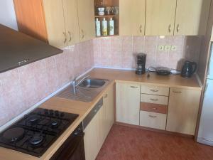 A kitchen or kitchenette at Apartman Villa Bogumila