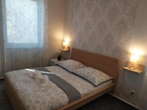 Postel nebo postele na pokoji v ubytování Hotel Boršičanka