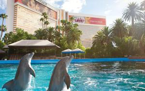 The swimming pool at or near The Mirage