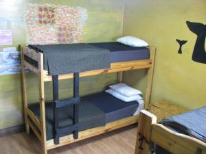 A bunk bed or bunk beds in a room at Torre al Sur
