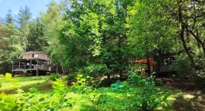 Jardin de l'établissement Spalazen Nature