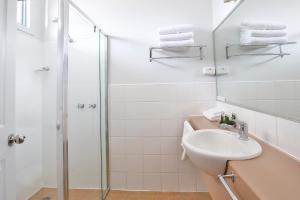 A bathroom at Robinvale Bridge Motel