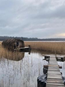 Bebru māja - Beaver house ziemā