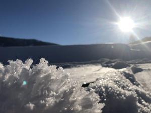 Ferienwohnung Jehsner during the winter