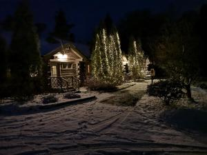 Pohjolantuvat during the winter