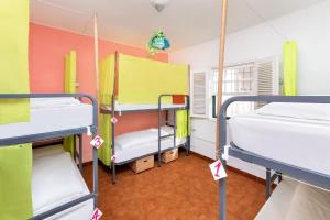 A bunk bed or bunk beds in a room at Patio Hostel