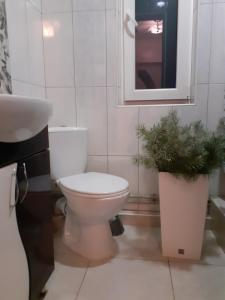 A bathroom at Guest House Viktoria