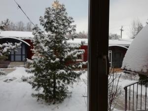 Lodge Shishma зимой