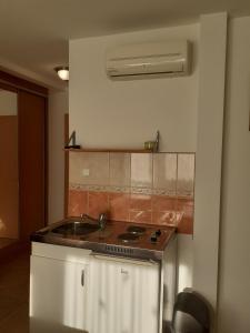 A kitchen or kitchenette at Pacsirta Vendégház Egerszalók