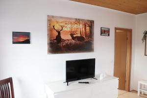 TV/Unterhaltungsangebot in der Unterkunft Ferienhaus Geli