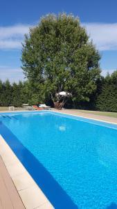The swimming pool at or near Eurhotel