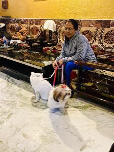 Pet or pets staying with guests at Hotel Meenakshi Udaipur