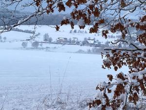 Pension-Saxler during the winter