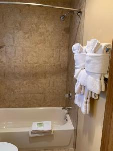 A bathroom at Matterhorn Inn Ouray