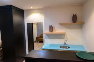 A kitchen or kitchenette at Hotel Executive Flat Arrey
