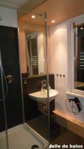 Salle de bains dans l'établissement Appartement du Château d'eau