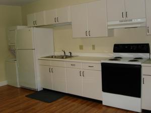 A kitchen or kitchenette at Copley LaReine Motel