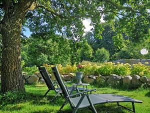 A garden outside Kunst Pension Frahm